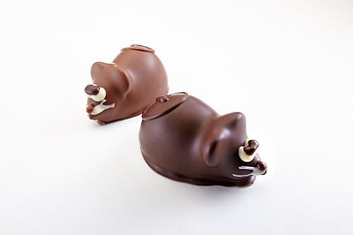 chocolate shaped as mice